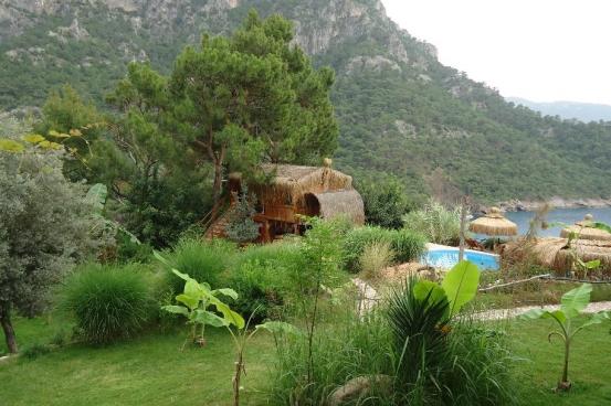 shambala camp